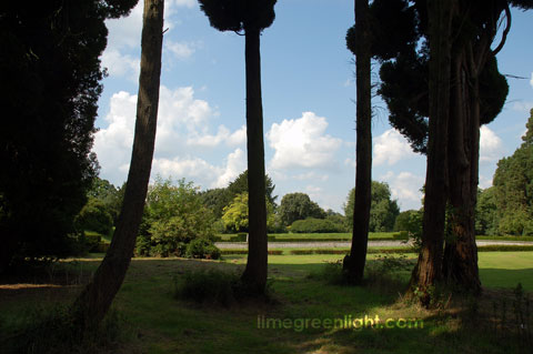 trees in garden at Ashridge in Hertfordshire
